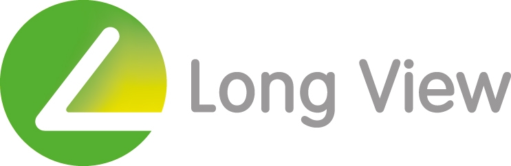 LONG VIEW SYSTEMS